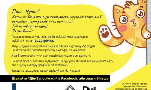 Сервіс електронних петицій у Запоріжжі. Що реалізували за 4 роки?